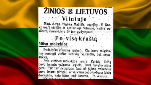 1918-ųjų vasario 16-os spauda – apie karą, lietuvaičių grožį ir L. Mažylio senelį