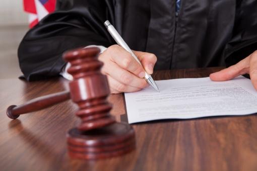 N. Venckienė įtariama trylika nusikalstamų veikų
