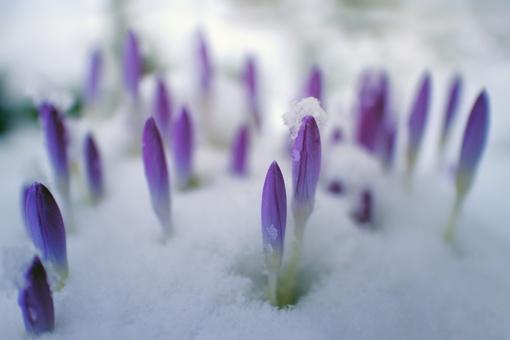 Orai: trumpą šilumos pliūpsnį keis atšalimas