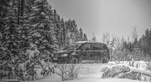 Elektrėnų savivaldybėje pavogtas automobilis