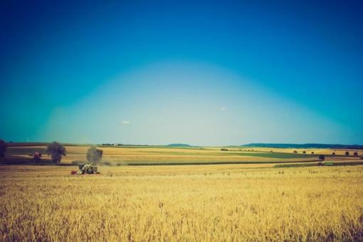 Įpykę Pakruojo rajono žemdirbiai ruošia rezoliuciją