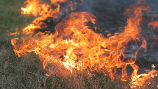 Šį savaitgalį ugniagesiai gelbėtojai jau 93 kartus vyko gesinti degančios žolės