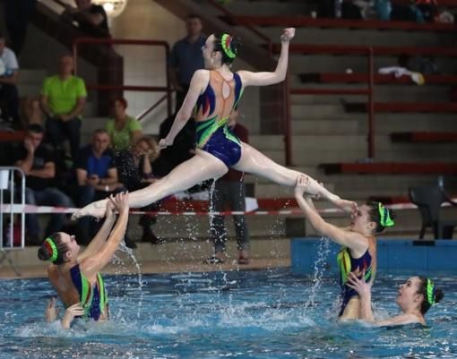 Vengrijoje vykusiose dailiojo plaukimo varžybose suspindėjo šiaulietės