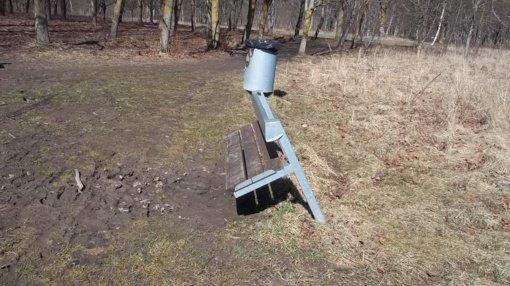 Turto naikinimas Dainų parke