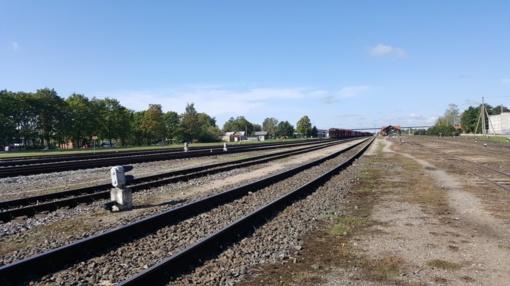 """Prasidės """"Rail Balticos"""" projektavimas pro Panevėžį"""