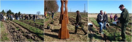 Vadžgiryje talkininkai sodino šimtmečio ąžuolyną