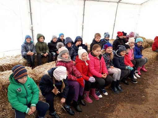 Šviečiamoji gyvulininkystės programa Želsvos mokykloje
