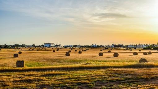 Ant slenksčio – parama smulkiesiems ūkiams