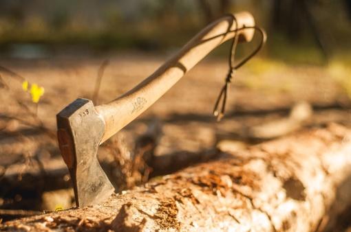 Kretingoje siautėjo kirviu ginkluotas vyras