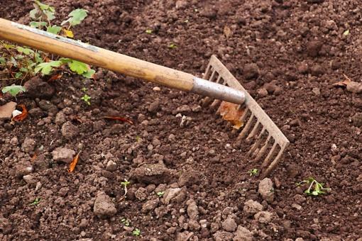 Lietuvoje 75 proc. dirvožemio balansuoja ant degradavimo ribos