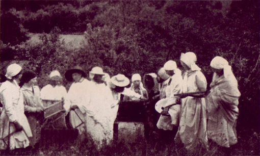 Lietuvės jau prieš šimtą metų vienijosi  dėl moterų apšvietimo (II d.)