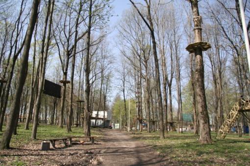 Šiauliečiai kviečiami padėti suskaičiuoti parko medžius