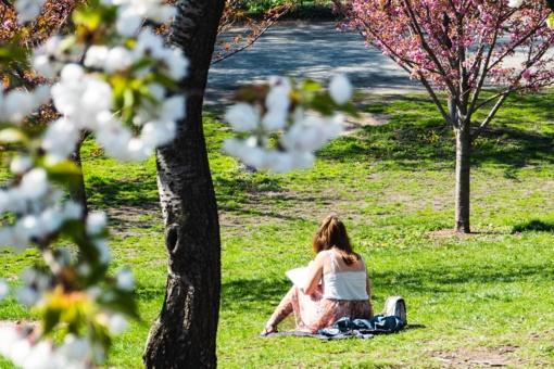 Kaip saugiai mėgautis saule ir aprūpinti organizmą taip trūkstamu vitaminu D?