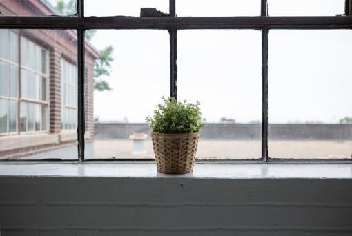 Drėgni namų langai gali prišaukti ir astmą: kaip to išvengti?
