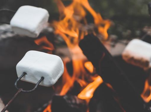 JAV geologijos tarnyba įspėja, kad ant lavos kepinti zefyrus nesaugu