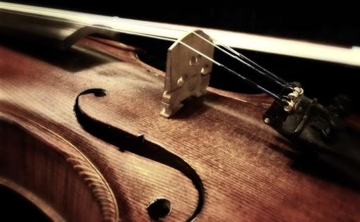 Muzikologams bus įteiktos muzikologijos autoritetų vardo premijos