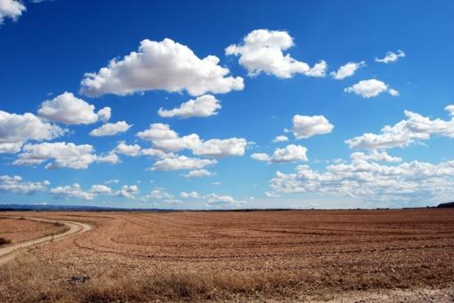 Siūloma daugiau priemonių, kad nebūtų įmanoma įsigyti daugiau nei 500 ha žemės