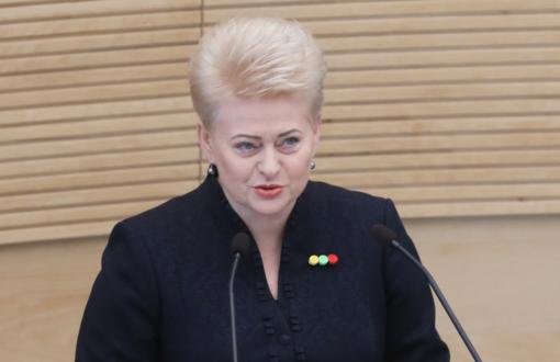 D. Grybauskaitė: erotikos apibrėžimas tampa svarbiau už socialinę atskirtį
