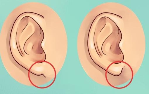 Ką apie jus pasako ausų forma?