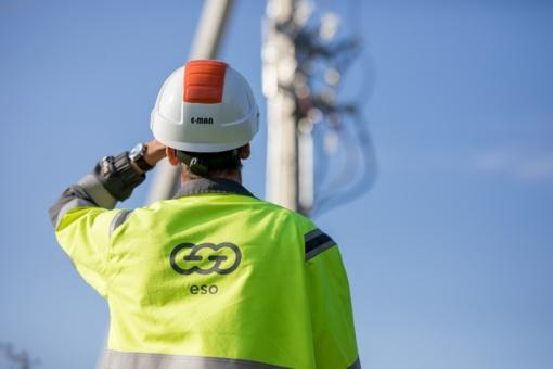 Valstybinė darbo inspekcija baigė ESO darbuotojo žūties aplinkybių tyrimą