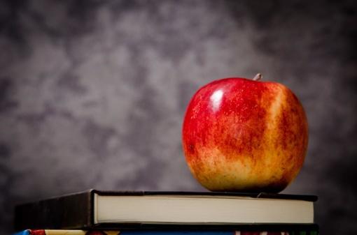 Norintiems tapti dviejų dalykų mokytojais - nemokamos studijos