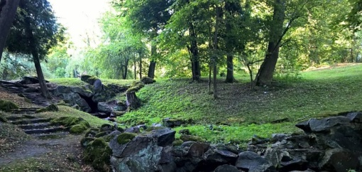 Pradedama Trakų ir Lentvario miestų želdynų ir želdinių inventorizacija