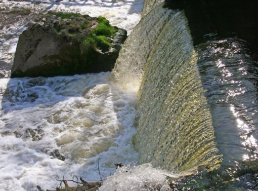 Apie užtvankų žalą gamtai – diskusija su užsienio mokslininkais