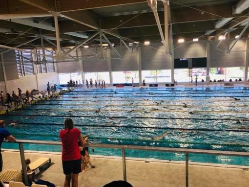 Šiauliečiai sėkmingai startavo naujajame Klaipėdos baseine