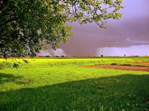 Orai: šilumos bus sočiai, tačiau lis vis dažniau