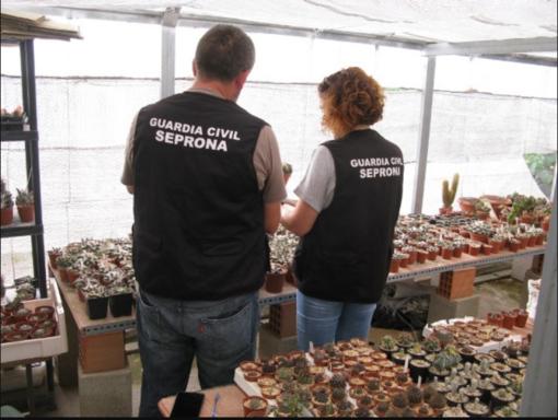 Lietuva dalyvavo tarptautinėje operacijoje, skirtoje kovai su nelegalia prekyba laukiniais gyvūnais ir augalais