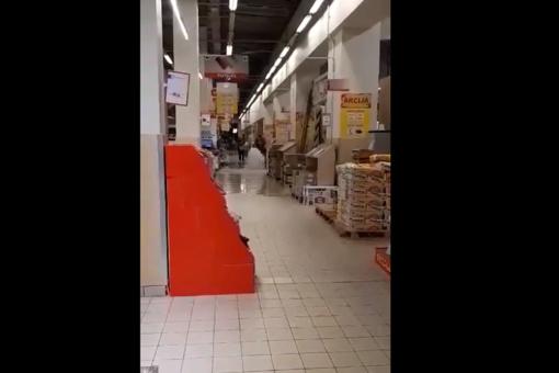 Šiauliuose liūtis niokojo ne vien automobilius (vaizdo įrašas)