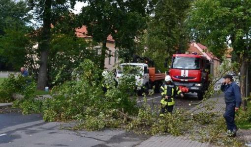 Ant namų ir kelių virstant medžiams, į pagalbą skubėjo ugniagesiai gelbėtojai