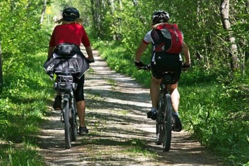 Žagarės vyšnių festivalį pabaigė MTB dviračių lenktynės