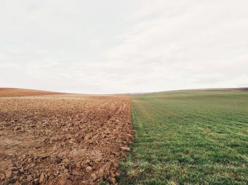 Žemės ūkio bendrovių asociacija: netiesa, kad sprendimas mažinti išmokas yra suderintas