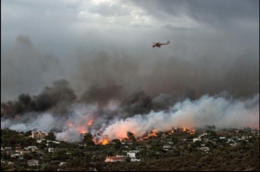 Graikijoje siaučiantys miškų gaisrai jau pareikalavo pusšimčio gyvybių