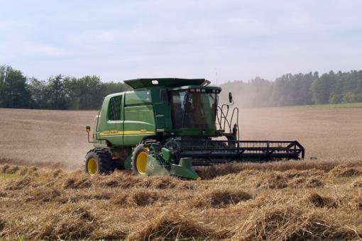 Ūkio darbų terminai rugpjūtį