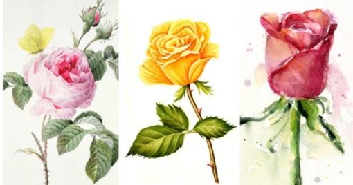 Pasirinkite vieną rožę ir sužinokite tiesą apie save