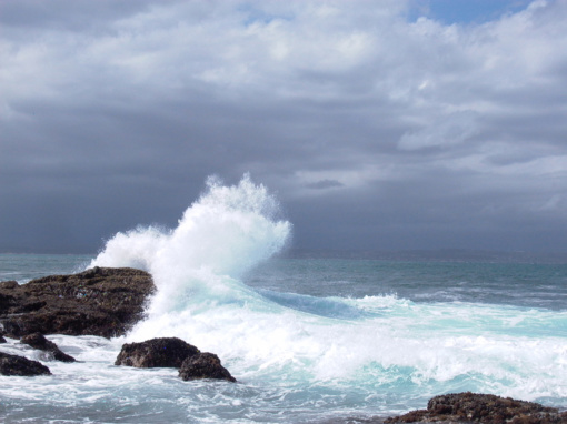 Tik 13 proc. pasaulio vandenynų vis dar yra laukiniai