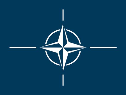 Politologai: Gruzija neturi politinės valios įstoti į NATO
