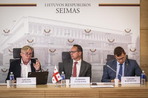 TS-LKD frakcijos nariai: reikia kelti sankcijų klausimą Rusijai neįvykdant tarptautinių susitarimų po Gruzijos-Rusijos karo