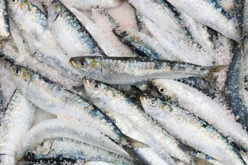 Žuvininkystės produktai – vieni iš labiausiai klastojamų maisto produktų pasaulyje