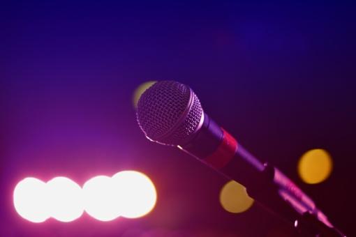 L. Kasčiūnas siūlo į nepageidaujamų asmenų sąrašą įtraukti dainininką iš Rusijos