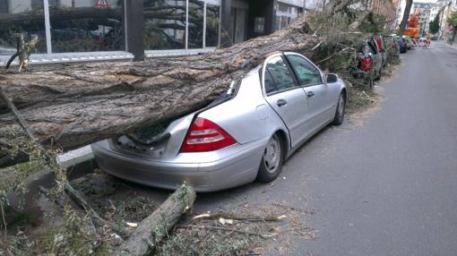 Ugniagesiai 44 kartus šalino nuvirtusius medžius