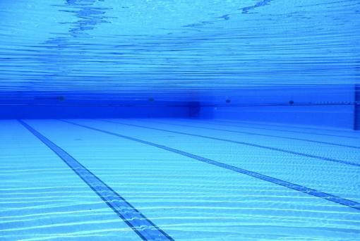 Plaukikas M. Dvylaitis pateko į Europos neįgaliųjų čempionato finalą