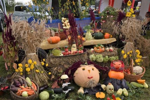 Žolinė – Turgelių derliaus šventė (fotogalerija)