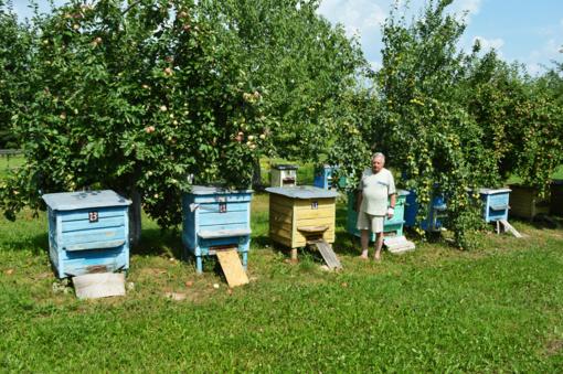 """82 metų J. Vasiliauskas: """"Emigruoti nereikės, jei dirbsite kaip bitės ir bitininkai"""""""