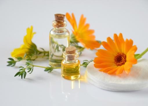 Žoliniai preparatai – kur kas efektyvesni nei homeopatiniai?