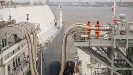Vyriausybėje bus ieškoma geriausio sprendimo, kaip užtikrinti SGD importą