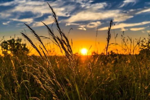 Orai: vasara dar nepasiduoda – šiluma plūstels ne kartą