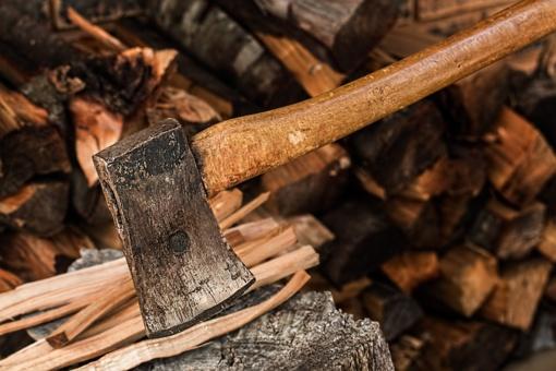 V. Pranckietis: proporcingas miškų kirtimas gali sumažinti šilumos kainas